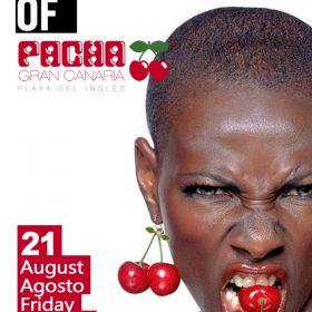 Pacha Las Palmas
